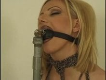 Bound Gagged and Getting Blowjob Training