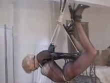 bondage Suspension and Latex