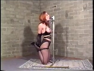 Blowjob training pole