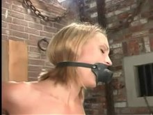BDSM Slave in Cage Punished