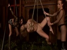 Suspension Shibari and BDSM