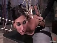 Hogtied and dominated while suspended to air