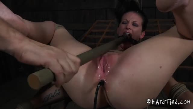 Hailey Young Hardtied