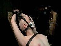Bald Slave Girl