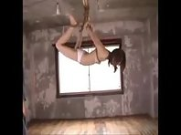 Shibari Suspension with Whipping