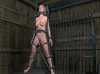 Slave Training Part 3