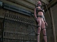 Slave Training Part 2