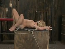 Ball gagged blonde in ropes sexed