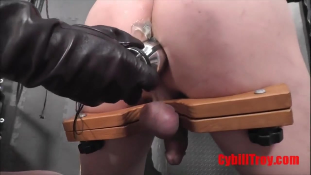 Cock and ball pillory