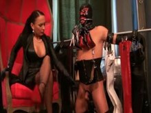 Femdom - fine Mistress and her slaves in latex