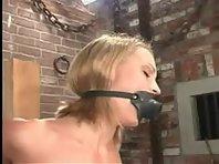 BDSM Files 038 : Jasmine Lynn