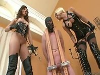 Extreme CBT Ball Whipping