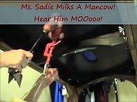 CBT Milking - Ms Sadie