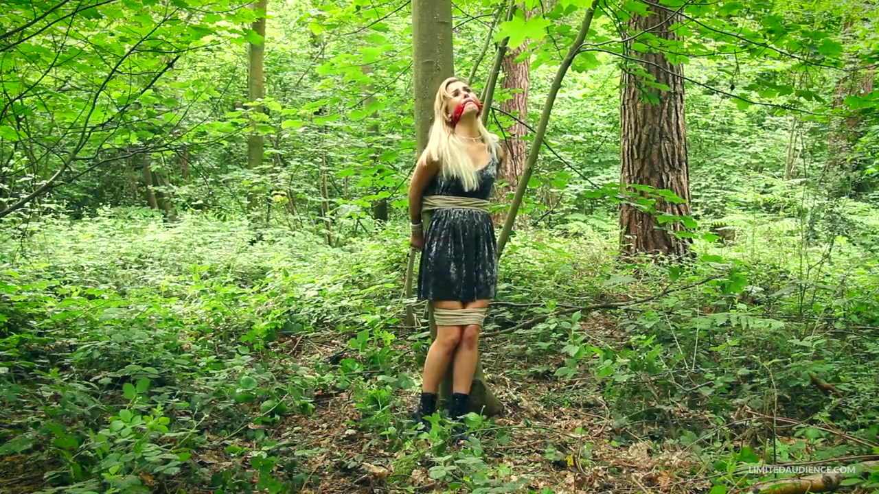 Bondage in The Forest