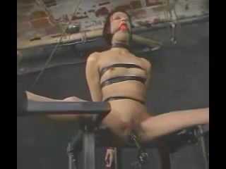 Insex Electro Torture