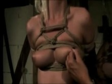 Nipple torture in bondage