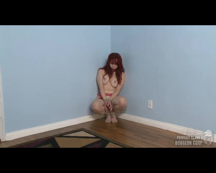 Andrea Rosu Pleased and Teased - Perfect Slave