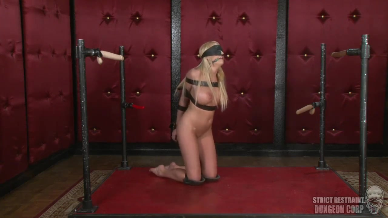 Blowjob Training by Lorelei Lee