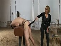 Domina and Slave in the Stables