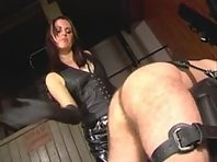 Beaten Over the Horse - English BDSM