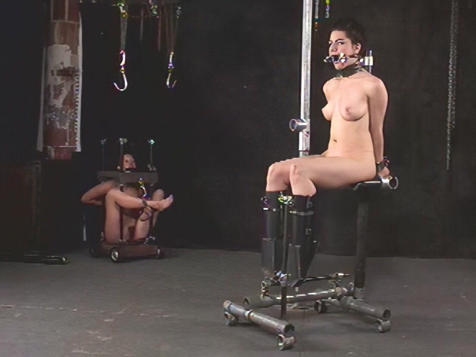 Insex - 411 Live Feed