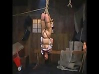 Japanese Breast Flogging in Suspension